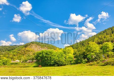 Village Situated At The Green Downhill . Summer Scenery With Farmland