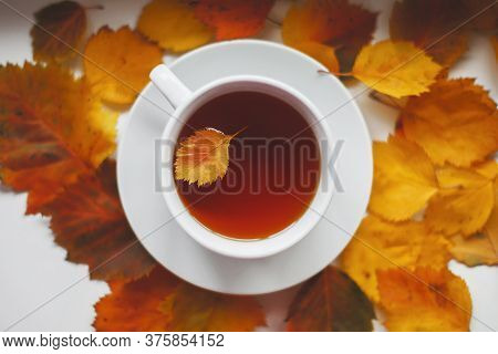 White Round Cup With Tea Among Autumn Orange Leaves, Leaf Inside A Cup, Autumn Concept