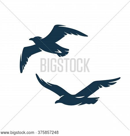 Seagull In The Sky For Nautical Marine Design