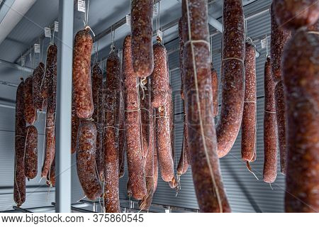 Mold Is Great For Traditional Salami Styles Dried At Lower Temperature And Low Humidity