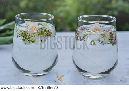Summer Drinks On A Garden Table. Two Glasses With Floral Infused Water. Flower Ice Cubes In A Glasse