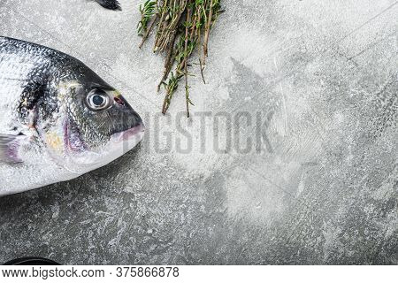 Raw Dorado Or Seabream Fish With Herbs For Grill Over Textured Grey Background  Top View Selective F