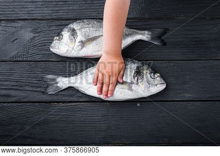 Raw Whole Pair  Dorado Or Sea Bream Fish With Kid Hand Over It On Black Wooden Table Top View.