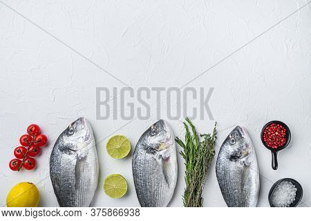 Raw Three  Sea Bream Or Gilt Head Bream Dorada Fish With Herbs Pepper Lime Tomato For Cooking And Gr