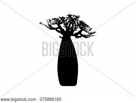 Boab Or Baobab Tree Vector Isolated, Andasonia Tree Silhouette Icon. Baobabs Silhouette Concept Sign