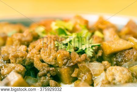 Stir Fried Pork With Onion And Garlic And Black Soy Sauce And Coriander Topping In Zoom View With Na