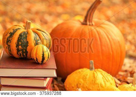 Autumn Books. Halloween Books. Stack Of Books And Pumpkins Set On Bright Autumn Foliage Background.l