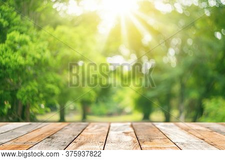 Blur Green Nature Bokeh With Sun Light On Copy Space Empty Old Wood Table Abstract Background.