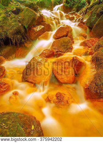 Stream At Sucha Kamenice Iriver N The National Park Bohemian Switzerland, Czech Republic