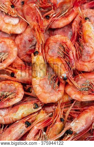 Group Of Boiled Frozen Wild Shrimp With Caviar Cooked In Sea Water. Background Of Lot Small Aquatic