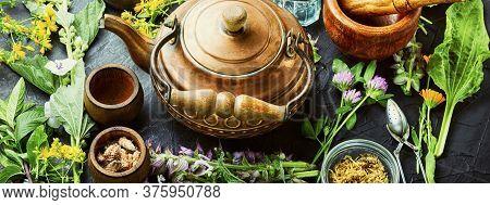 Fresh Healing Herbs