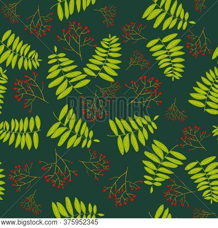 Rowan Berry Branches And Leaves Green Seamless Pattern. Seamless Autumn Pattern. Fall Colorful Flora