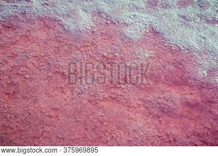 Сloseup Salt, Brine And Mud Of Pink Salty Sivash Lake Near Azov Sea, Colored By Micro Algae Dunaliel