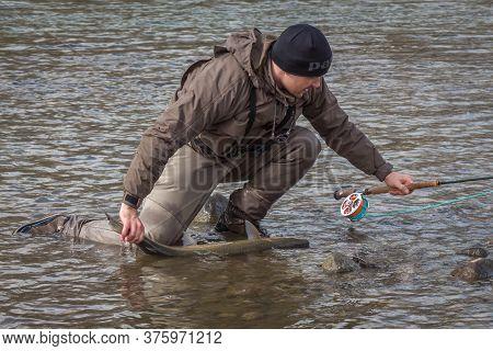 Kalum River, British Columbia, Canada - April 11th, 2017: An Angler Who Has Landed A Steelhead, Rain