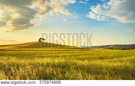 Sunset Landscape In Maremma Countryside. Rolling Hills, Rural Tower And Trees. Bibbona. Tuscany, Ita