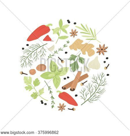 Spices And Herbs. Color Different Cooking Aromatic Ingredients Design For Restaurant Menu, Banner St