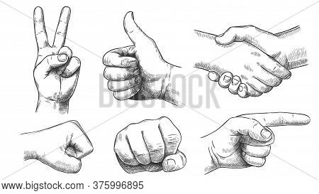 Hand Drawn Gestures. Pointer Finger, Strong Fist And Punch. Handshake, Thumb Up Like And Triumph Vic