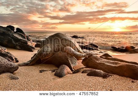 It's been a long day