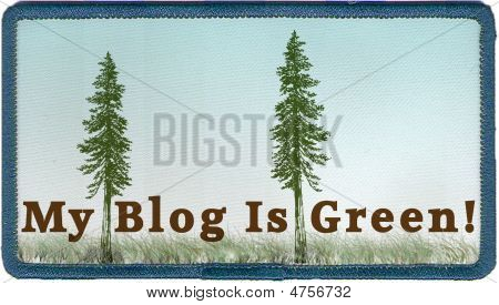 My Blog Is Green