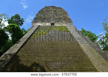 Mayan Temple Nr Five In Tikal, Guatemala