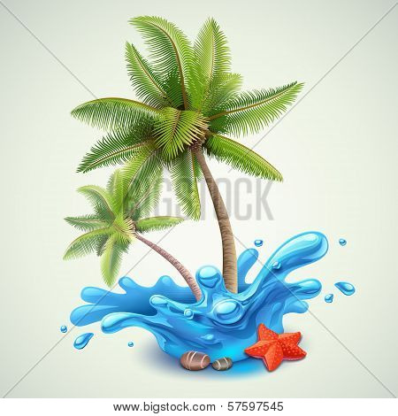 Water splash with palms