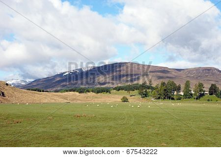 Carn Dubh Hill, Scotland In Spring