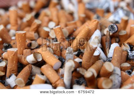 Plenty of cigarette butts. Close up view poster