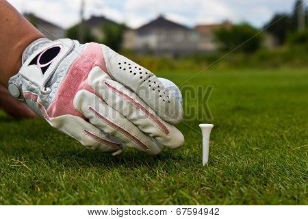 Close-up Of A Gloved Hand Of A Female Golfer Placing Golf Ball On The Tee