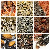 a collage of nine pictures of different seafood poster