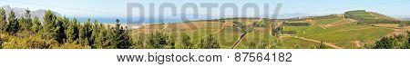 Wine Farm Near Sir Lowrys Pass