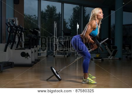 Woman Doing Exercise For Back