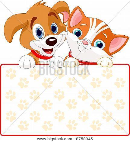 Gato y perro señal