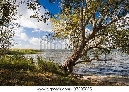 Landscape On Lieper Winkel On The Usedom Peninsula