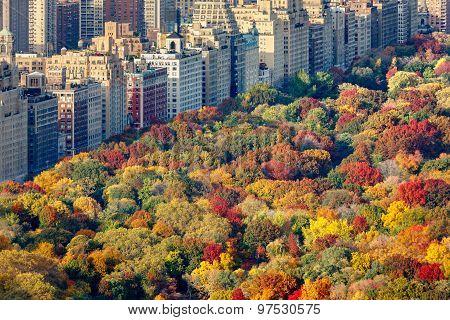 Fall foliage and Central Park West, Manhattan, New York City