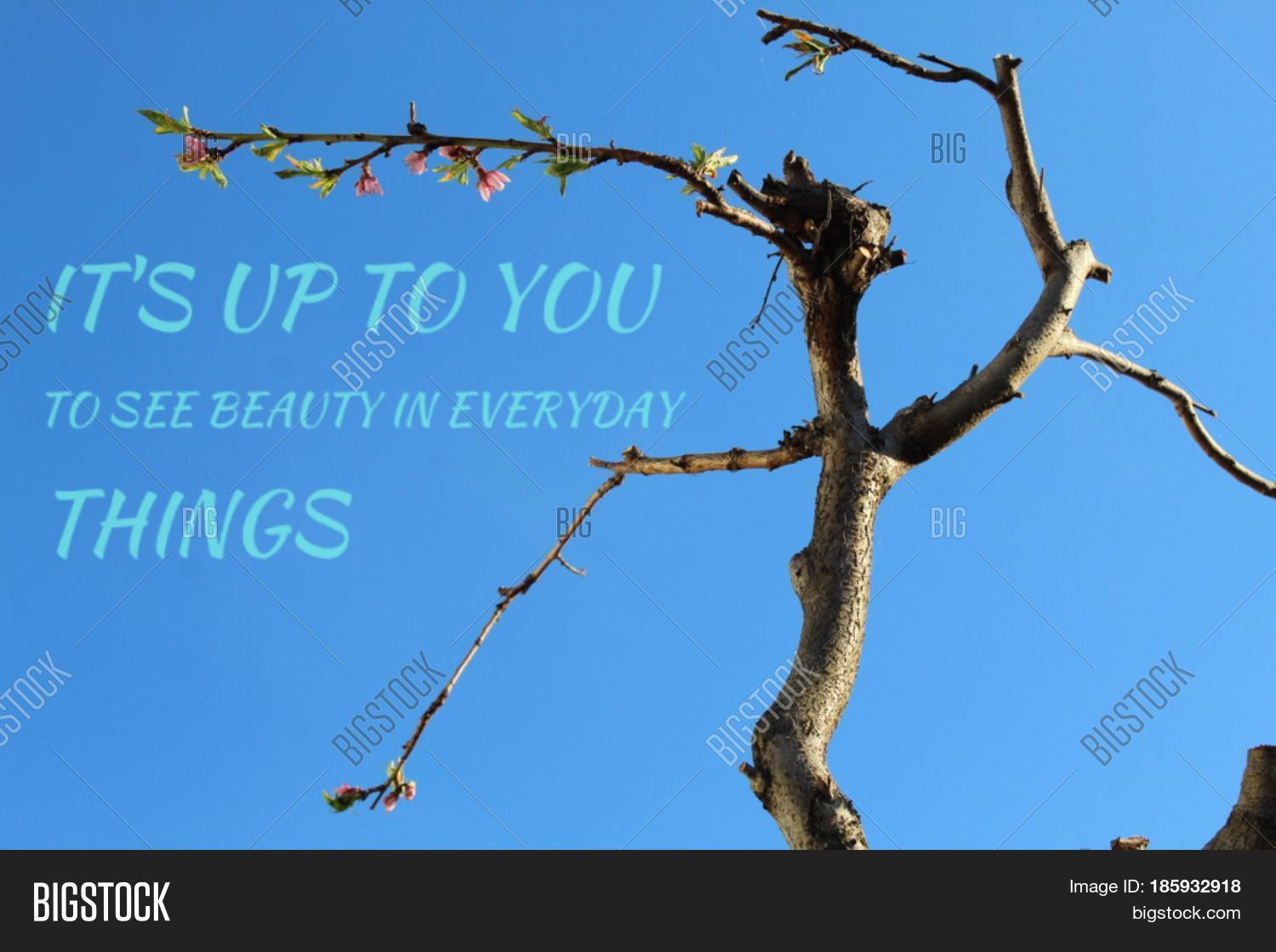 Inspirational quote on image photo free trial bigstock inspirational quote on clear blue sky with tree branches with small leaves and flowers blooming izmirmasajfo
