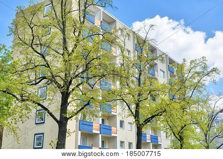 Social Housing Behind Some Trees In Spring