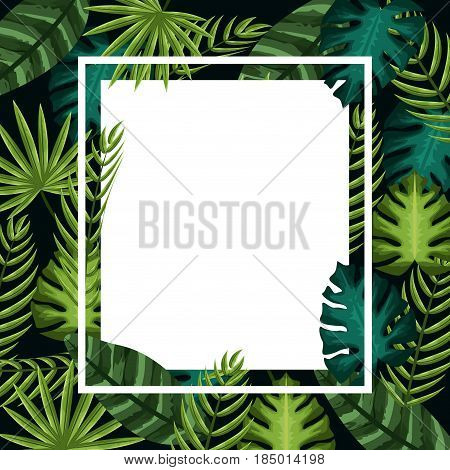 cute framework with exotic leaves plants, vector illustration design