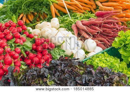 Carrots, radish and other vegetables for sale at a market