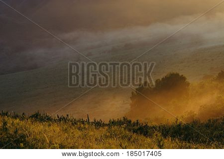 Mountainous hills in the morning mist. Dawn. Altai. Yellow. Red.