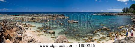 Shark'S Cove Panorama