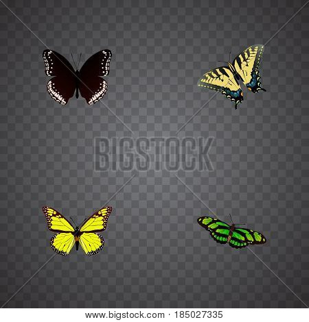 Realistic Checkerspot, Archippus, Green Peacock And Other Vector Elements. Set Of Butterfly Realistic Symbols Also Includes Black, Hypolimnas, Monarch Objects.