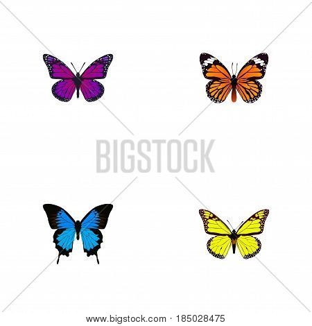 Realistic Purple Monarch, Common Blue, Archippus And Other Vector Elements. Set Of Moth Realistic Symbols Also Includes Butterfly, Monarch, Orange Objects.