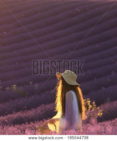 A girl with flowing golden hair holding a basket and walking in a lavender field in the Valensole Plateau Provence France.