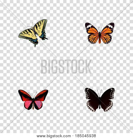 Realistic Checkerspot, Callicore Cynosura, Monarch And Other Vector Elements. Set Of Moth Realistic Symbols Also Includes Tiger, Monarch, Red Objects.