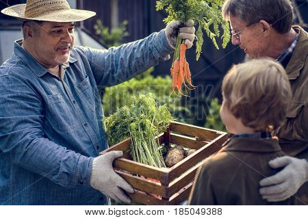 Family buying fresh vegetable from the garden