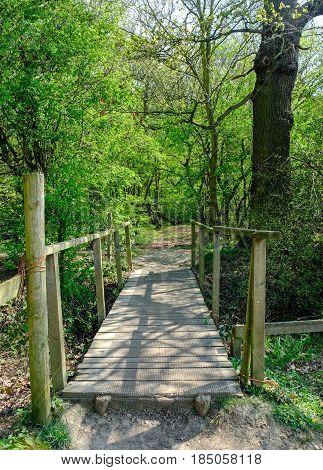 Wooden bridge crossing in the forest in Essex in Springtime.