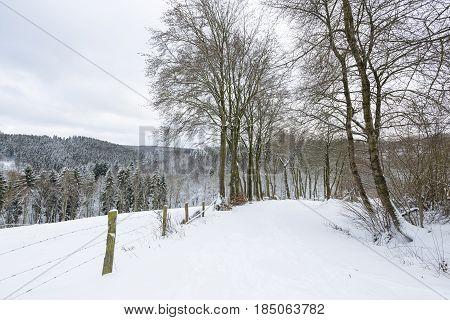 Eifel Winter Landscape Near Monschau, Germany
