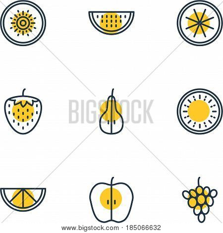 Vector Illustration Of 9 Fruits Icons. Editable Pack Of Berry, Duchess, Watermelon And Other Elements.