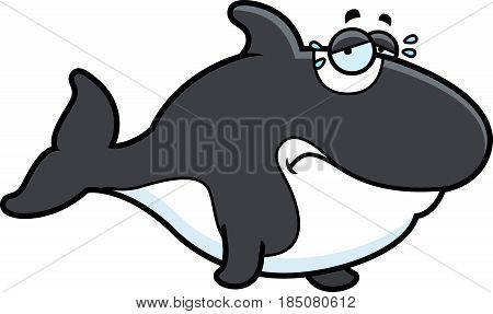Crying Cartoon Killer Whale