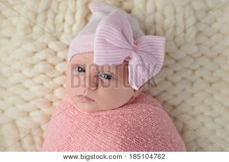 Studio portrait of an alert month old newborn baby girl. She is wearing a hat with a large bow and wrapped in a pink swaddle.